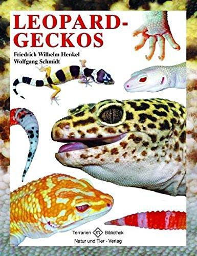 Leopardgeckos (Terrarien-Bibliothek)