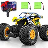 DOUBLE E RC Car 4WD Remote Control Car 2 Batteries Unique Colorful Shell Off Road Monster Truck 2...