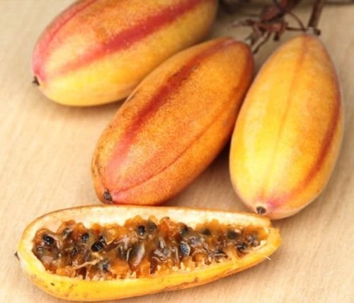 10 Graines Passiflora mollissima, Banane Passion comestible Passionfruit Fruit semences