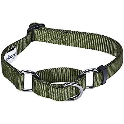 Blueberry Pet Essentials 19 Colors Safety Training Martingale Dog Collar, Military Green, Small, Heavy Duty Nylon Adjustable Collars for Dogs