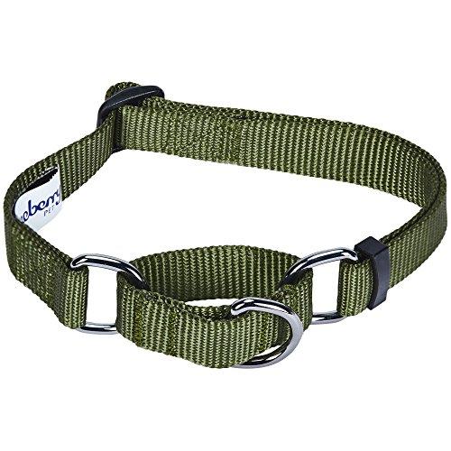 Blueberry Pet Sicherheitstraining Martingale Hundehalsband Klassisch Einfarbig 1,5 cm S Basic Polyester Nylon Hundehalsband Langlebig - Militärgrün