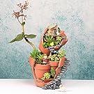 Segolike Resin Sky Garden Succulent Plant Flower Bed Pot Box Garden Planter Dollhouse
