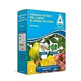 Adama Antiperonosporico sistemico fungicidi 500g, Multicolore, Unica...