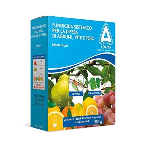 Adama Antiperonosporico sistemico fungicidi 500g, Multicolore, Unica