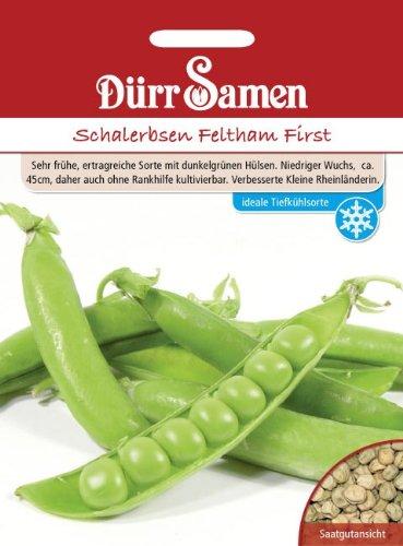 Dürr Samen 4091 Schalerbse Feltham First 250 g (Schalerbsensamen)