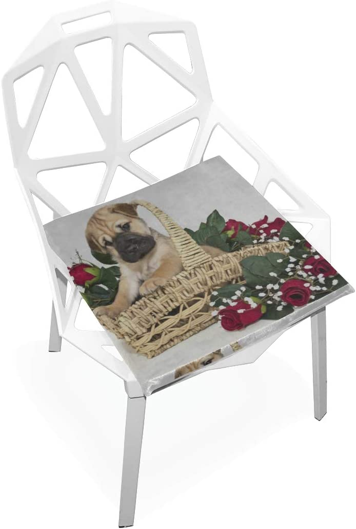 YUMOING Office Chair Seat Cushion Cute Basket Max 86% cheap OFF in The Puppy Soft