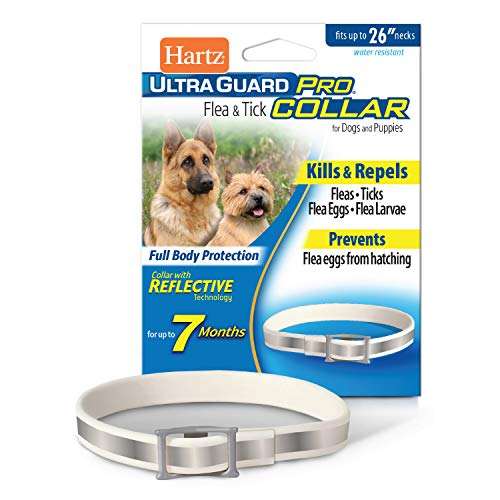 Hartz UltraGuard Pro Reflective Flea & Tick Collar for Dogs and Puppies, 7 Month...