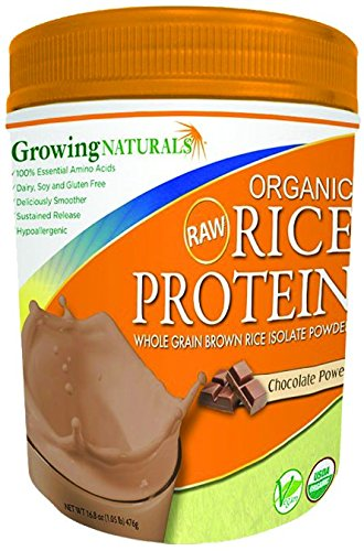 Growing Naturals Rice Prot Pwd Og2 Choclt 16.8 Oz