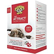 Dr. Elsey's Precious Cat, Attract Training Cat Litter, 20 Lb. - 1 Pack