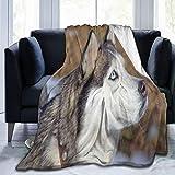 CONICIXI Polar Stare Siberian Breed Sleigh Husky Wolf Ritratto Animali Fauna Selvatica Cane Natura Testa Travel/Single (130x150cm) Coperta da tiro in Morbida Flanella