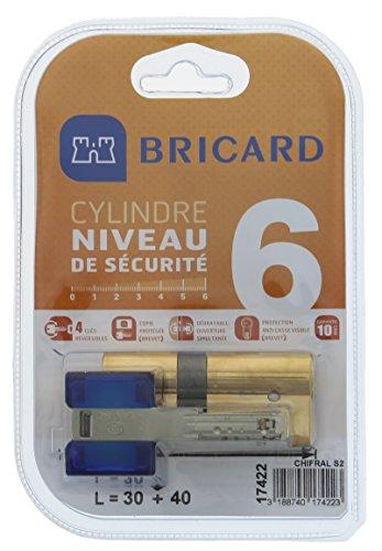 Bricard 17422 Cylindre de serrure double entrée Chifral S2 30x40 Laiton Jaune