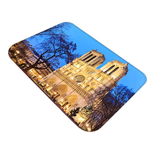 ZEELIY Antirutschmatte Teppichunterlage Teppichstopper Rutschschutz für Teppich Teppich Antirutsch Rutsch Stop Notre Dame de Paris Pattern Square Bereichswolldecke Fleece Kitchen Bathroom 40X60CM