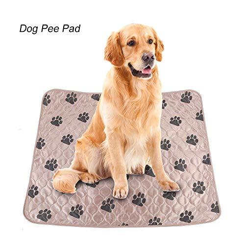 Delaman Dog Pee Pad Holder Lavable Perro...