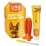Natural Dog Treats Brosse à Dents et...