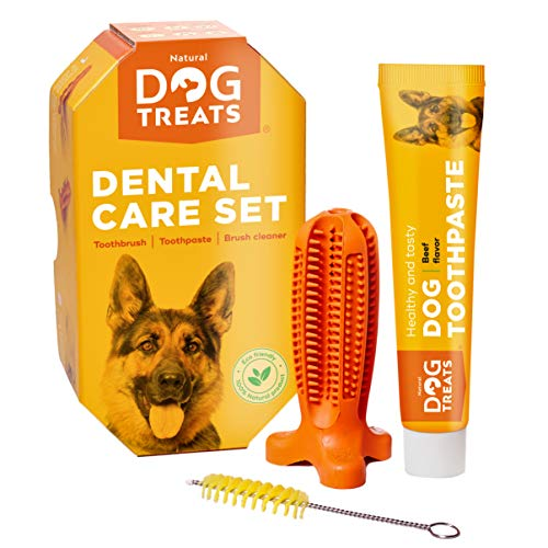 Natural Dog Treats Tandborste Leksak och Tandkräm med Nötköttsmak Tandvård Tandrengöring set, 100% Naturlig Tuggleksak av Gummi till Hundar, Storler Liten
