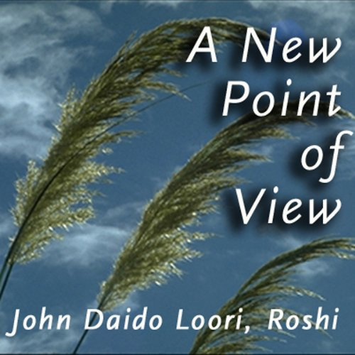 A New Point of View audiobook cover art
