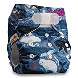 Littles & Bloomz, Reusable Pocket Cloth Nappy, Fastener: Hook-Loop, Set of 1, Pattern 47, Without Insert