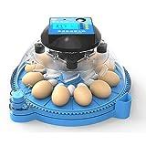 HOUSEHOLD Las incubadoras de Huevos domésticos voltean auto
