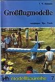 Grossflugmodelle: Anregungen, Tips, Praxis (VTH-Modellbaureihe) - F W Hofstede