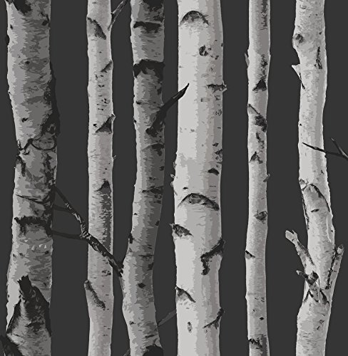 Fine Decor 2900-31052 Black Distinctive Birch Tree Wallpaper