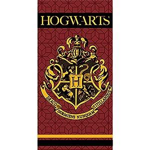 Toalla Hogwarts Harry Potter microfibra 6