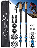 FREEMOVE Trekking Poles Collapsible, Lightweight Ultra Strong Aluminum 7075 Sticks for Hiking