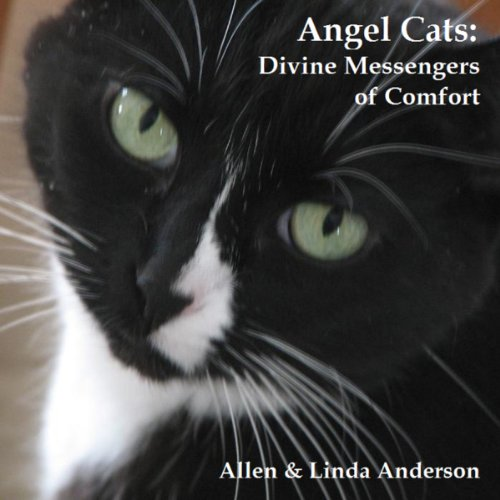 Angel Cats audiobook cover art