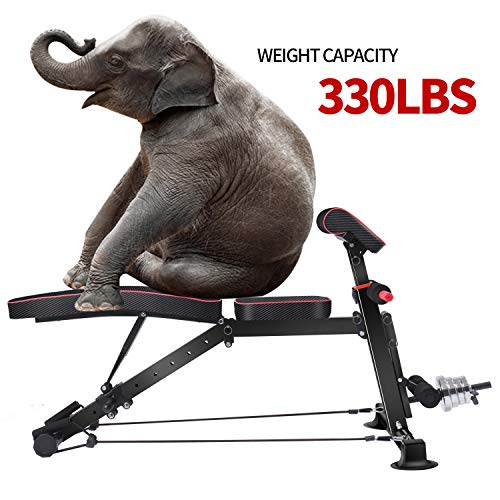Adjustable Weight Bench - Utility Weight Benches for Full Body Workout, Foldable Flat/Incline/Decline Exercise Multi-Purpose Bench for Home Gym (DZ)