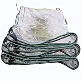 AWSAD Lona Multifuncional Transparente De PVC 0,3 Mm / 0,5 Mm Alféizar De La Ventana Plantas En Macetas, Etc. Impermeable, A Prueba De Viento, Transparente (Color : Clear, Size : 2mx4m(0.3mm))