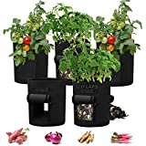 5 Pack Grow Bags for Potato Tomato 7 Gallon Potatoes Growing Bag with 2 Access Flaps Grow Bags for Vegetable Flower Fabric Planting Pots with Sturdy Handles Potato Planter Bag