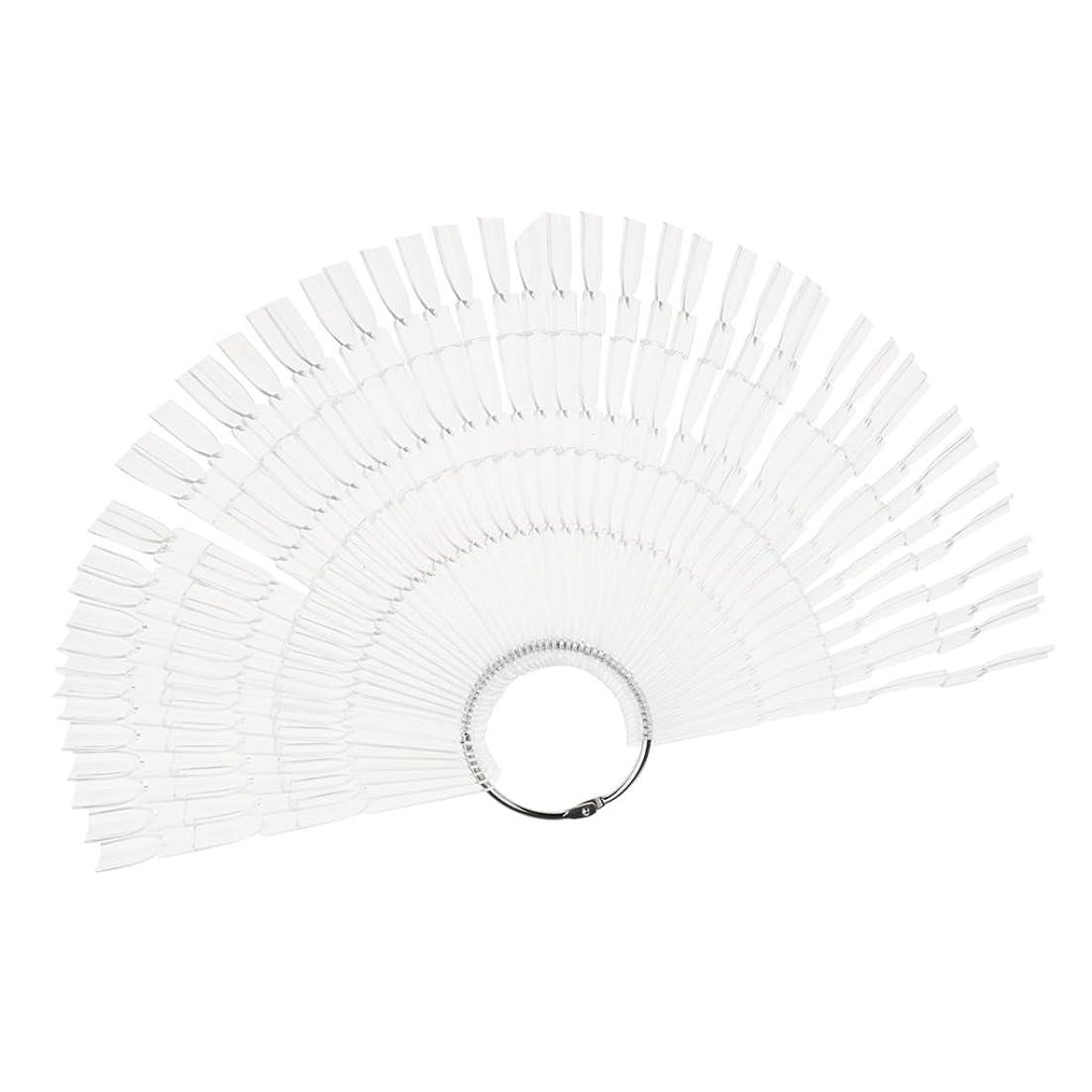 ネイルアート カラー表示チャート 約50個の扇形ヒント ネイルパレット 2タイプ選べる - クリア