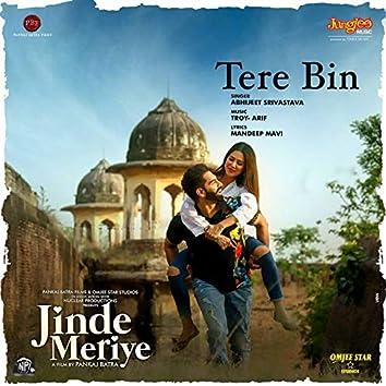 "Tere Bin (From ""Jinde Meriye"") - Single"