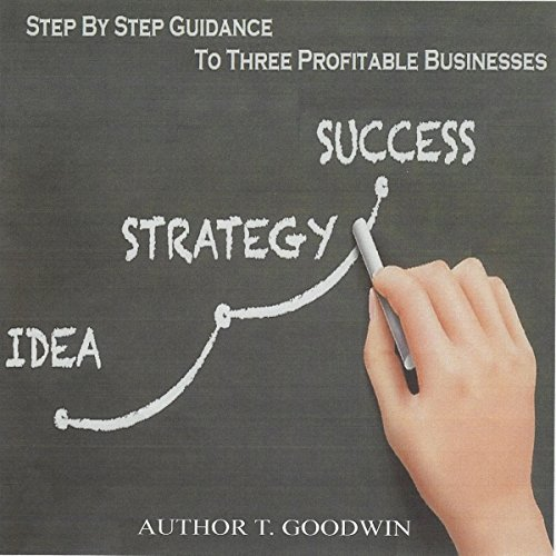Step by Step Guidance to Three Profitable Businesses: Idea, Strategy, Success audiobook cover art