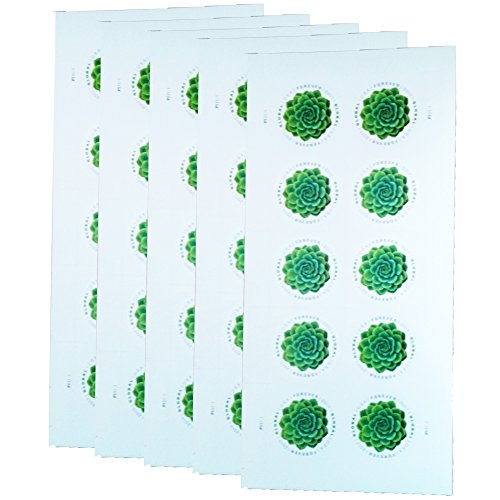 Green Succulent Sheet of 10 Global USPS First Class International Forever Postage Stamps (5)