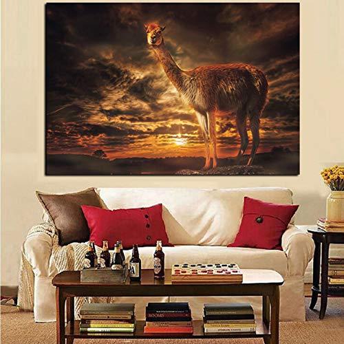 HD-Druck Lama Dämmerung Sonnenuntergang Wolken Landschaftsmalerei auf Leinwand Kunst Tier Wandbild Dekor für Wohnzimmer 70x100CM