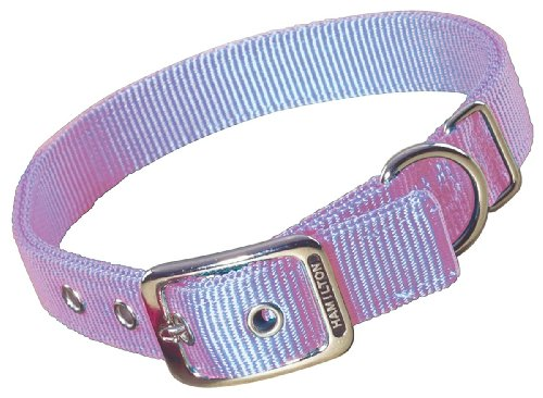 Hamilton Double Thick Nylon Deluxe Dog Collar, 1-Inch by 26-Inch, Lavender