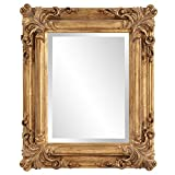 Howard Elliott Edwin Hanging Rectangular Accent Rustic Antique Gold Wall Mounted Mirrors, Elegant Embellished Framed Decorative Mirror, 19 x 23 Inch