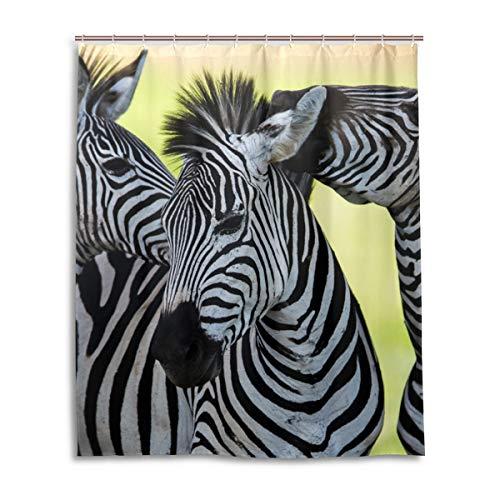 JSTEL Decor Duschvorhang Zebra Afrika Muster Print 100prozent Polyester Stoff Duschvorhang 152,4 x 182,9 cm für Home Bad Deko Duschvorhang