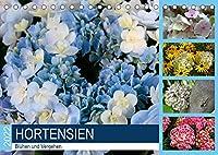 Hortensien Bluehen und Vergehen (Tischkalender 2022 DIN A5 quer): Hortensie, eine Pflanze, die selbst im Verbluehen reizvoll bleibt (Monatskalender, 14 Seiten )