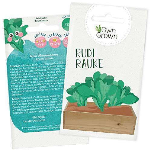 Rucola Samen: Premium Wilde Rauke Samen für Kinder und Erwachsene – Salat Samen für 200x Rucola Salat Pflanze Rudi Rauke – Garten Gemüse Saatgut für Kids – Gemüse Samen – Salatsamen von OwnGrown