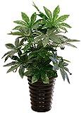 Miwaimao Planta Artificial de látex, 65 cm, árbol perenne, árbol de Pachira, en Bodas, casa, Playa, Oficina, Muebles, decoración de Ramas Verdes y follaje Artificial (Color : C)