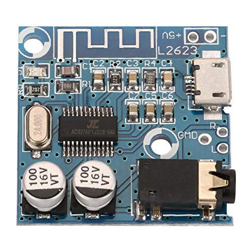 Okuyonic Placa decodificadora de Calidad de Sonido Sensible sin pérdida, Interfaz USB, módulo Amplificador de Audio para amplificar la Potencia