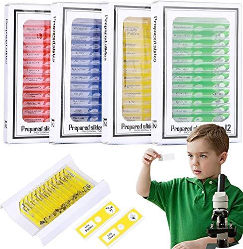 Kinder-Mikroskop-Objektträger für Kinder,48 Stücke Kunststoff, vorbereitet, Probe Tiere für Tiere, Insekten, Pflanzen, Blumen, Proben für Stereo-Mikroskope #2-002,Studenten Erleuchten Bildung
