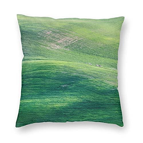 Funda de almohada de poliéster para decoración del hogar, resistente a las manchas, funda de cojín impresa, para sala de estar al aire libre, sofá, camping y coche