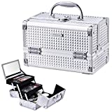 Joligrace Makeup Box Cosmetic Train Case Jewelry Organizer Lockable with Keys and Mirror 2-Tier Tray Portable Carrying with Handle Travel Storage (Silver)