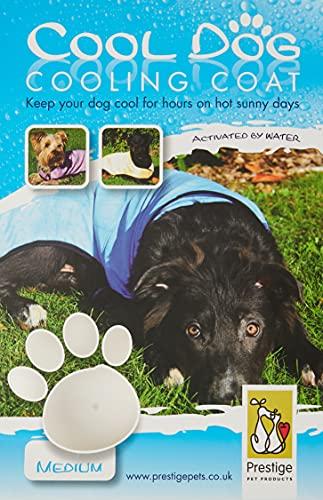 Prestige - Manteau rafraichissant pour chien - Violet - Taille M