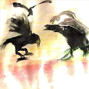 Stray Crow Strut