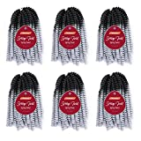 Roktress 10 Inch 6 Packs Spring Twist Crochet Hair Ombre Silver Braiding Bomb Twist Ombre Colors Low Temperature Kanekalon Synthetic Fiber Fluffy Hair Extensions(10'6Packs,OTSilver)