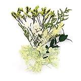 Shiwaki Flores Artificiales Caja de Flores de simulación Planta de Flor Seca preservada DIY Vela Resina Fabricación de Joyas Artesanía Decoración Ducha Decoraciones para el hogar - Sue?o de Verano