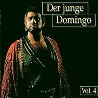 Der Junge Domingo 4